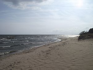 Берег озера у деревни Каукси, Эстония