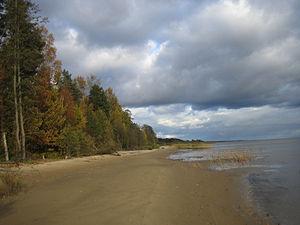 Берег озера у деревни Раннапунгерья, Эстония