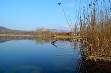 Берег озера Палатинуш