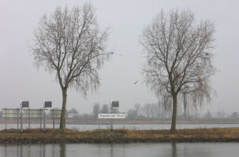 Афгедамде-Маас