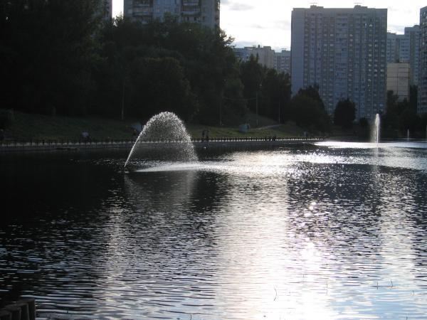 Беловежский пруд