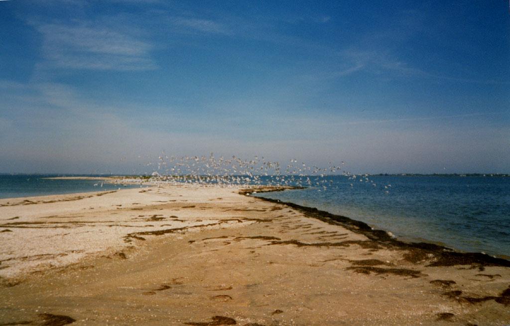 Бердянский залив