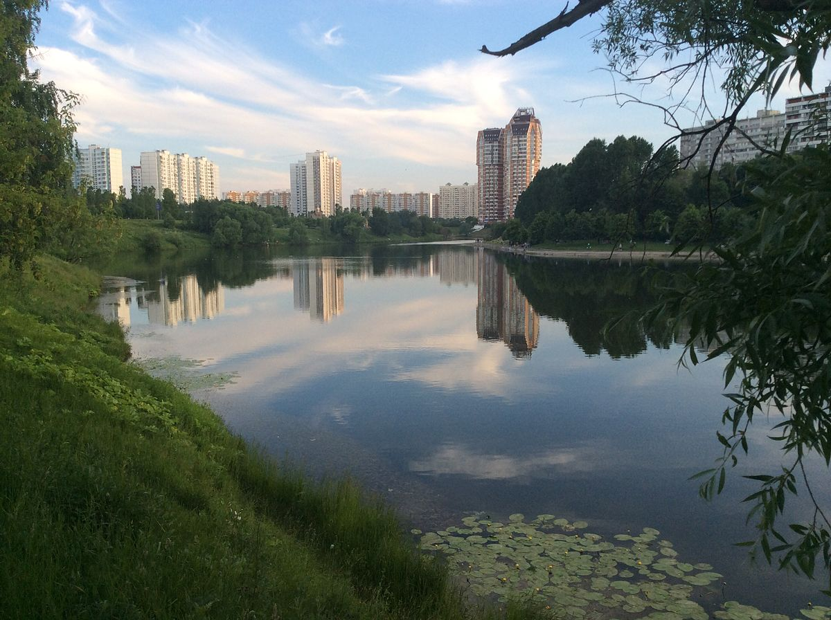 Большой Очаковский пруд (Москва)