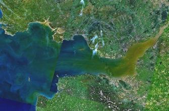 Бристольский залив