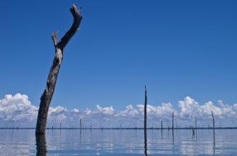 Брокопондо (водохранилище)