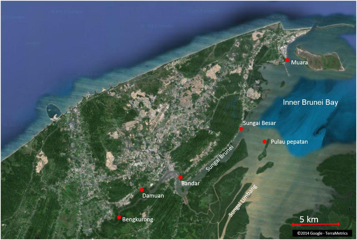 Брунейский залив