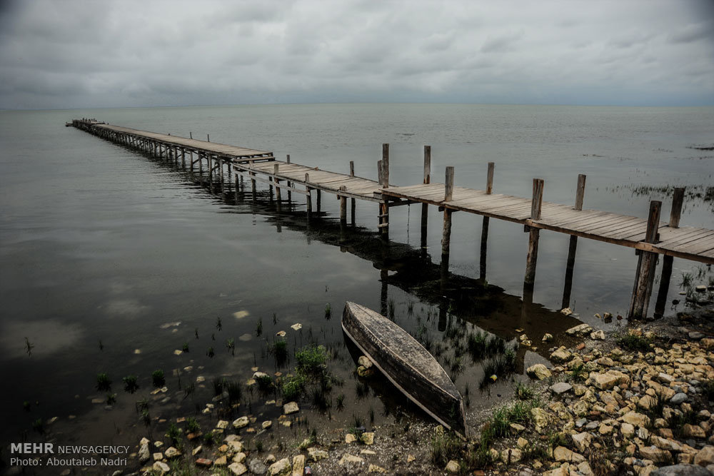 Горганский залив