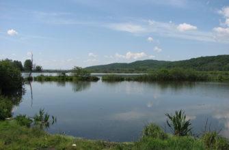 Ирдынское болото