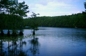 Каддо (озеро)