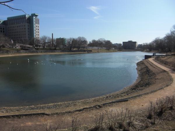 Калитниковский пруд