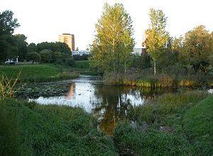 Кенгарагский пруд