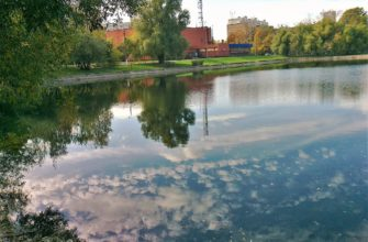 Купавенский пруд