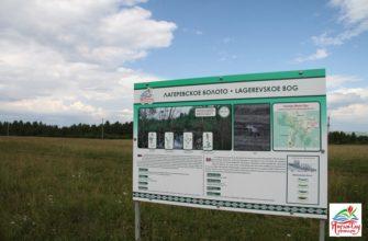 Лагеревское болото