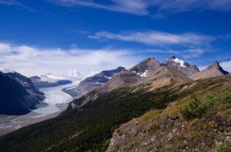 Саскачеван (ледник)