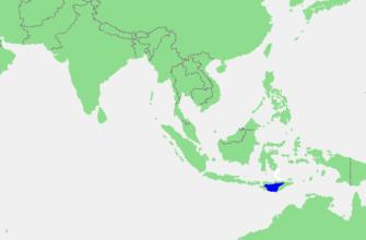 Саву (море)