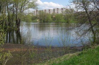 Смирновский пруд (Арзамас)
