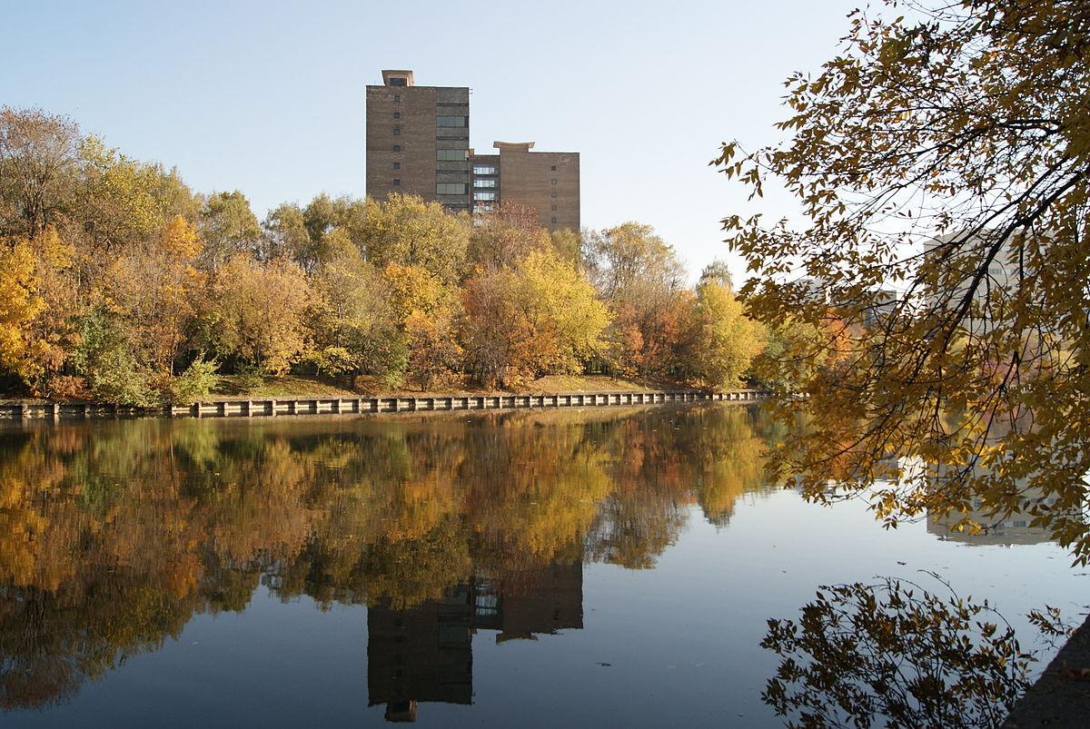 Владимирский пруд (Москва)