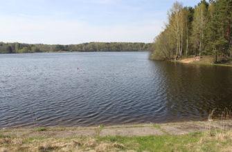 Вяча (водохранилище)