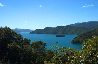 Залив Королевы Шарлотты (Новая Зеландия)